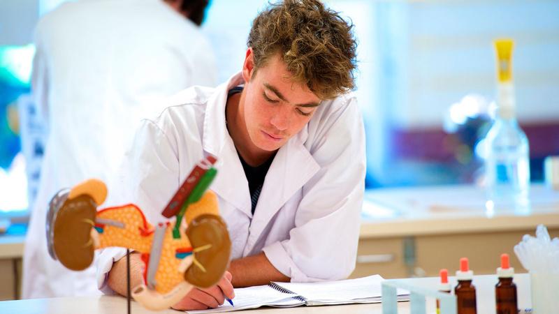 Anatomy student at Lismore campus