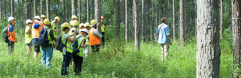 Forest science regional Australia research