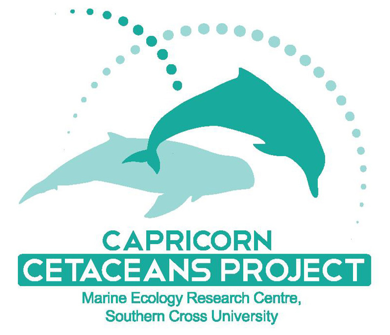 Logo of the CCP project