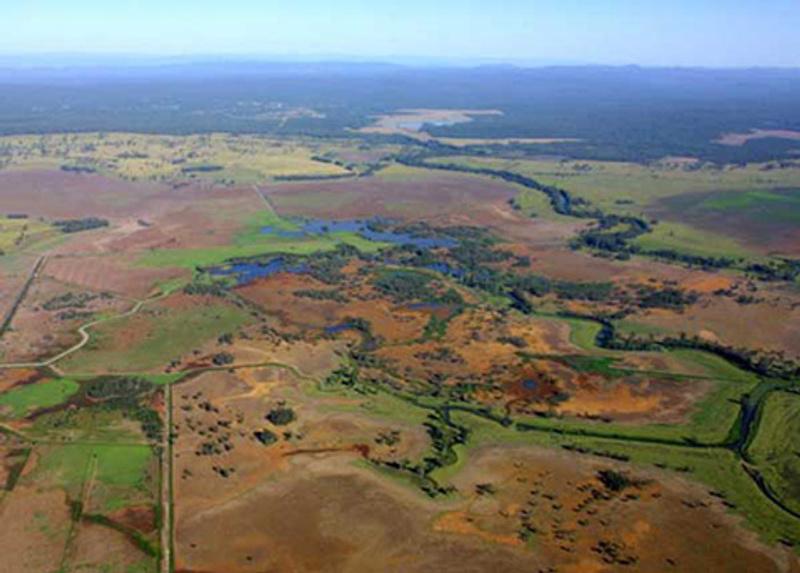 Backswamp-Acid-Sulfate-Soil-Northern-NSW