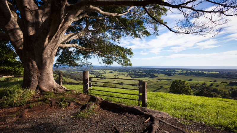 View of hinterland in the Lismore region