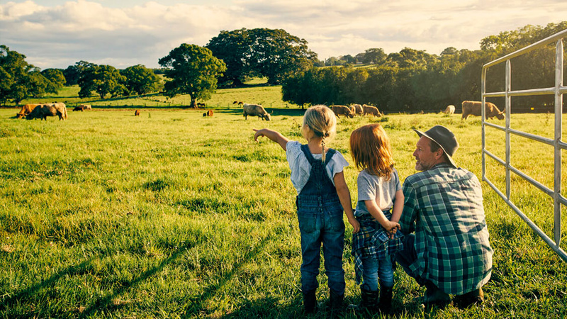 Two children and adult standing in green paddock